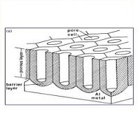 U型单通AAO纳米模板